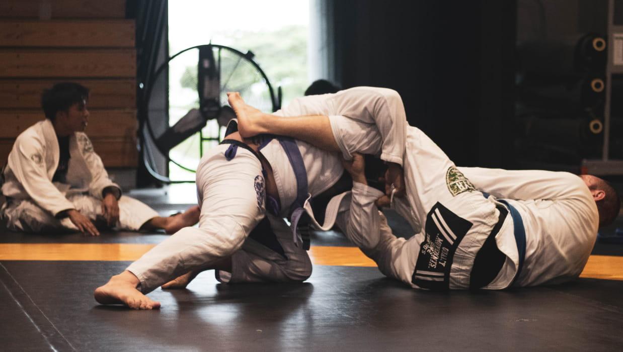 Wellington's Judo Star